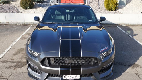 FORD (USA) MUSTANG - Wild, wilder, Shelby