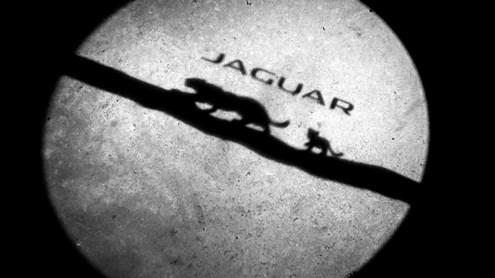 JAGUAR E-PACE - Katze mit Kurventalent